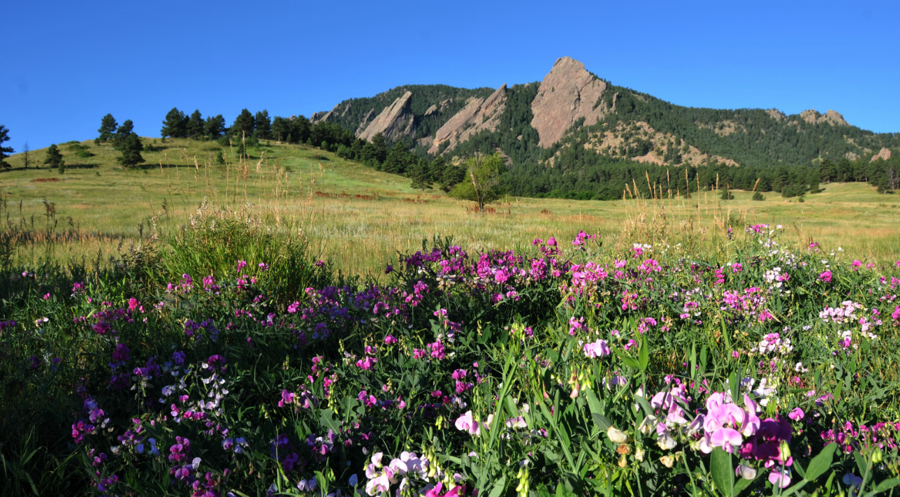 Chataqua Park and Flatirons in Boulder, Colorado